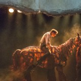 Vlaamse Première War Horse-0